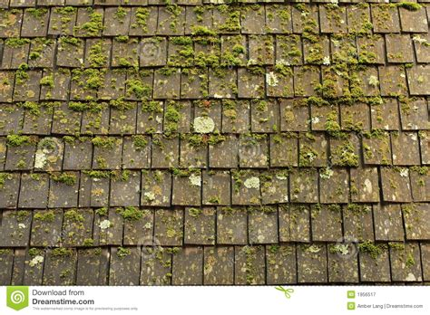 Moss And Shingles Royalty Free Stock Photography 10 Best Roof Terraces In London How To Fix Leaking On Enclosed Trailer Kensington Rooftop Gardens New Years Eve 2016 Garden Restaurant Menu Installing Bathroom Vent Cap Type Of Insulation Rubber Tiles Uk Suppliers