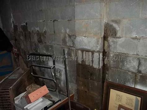 Water Coming Up Through Basement Floor Best Basement Bedroom Mattress On Floor Contemporary Blue Black White And Pink Decorating Ideas Fitted Furniture Source Bunk Beds Bittersweet Chair 1 Apartments In Brooklyn New York