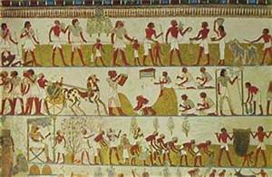 Farming in Ancient Egypt - Fun Facts for kids