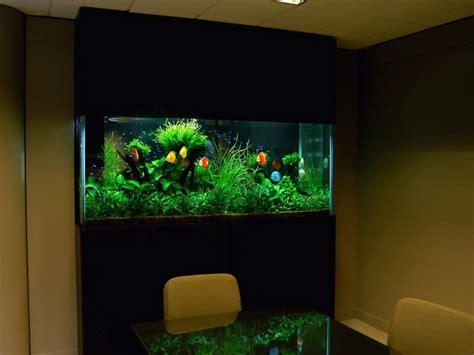 decorations awesome fish tank fish tank decor ideas fishtank prefixes and suffixes aquariums