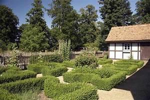 Wann Wächst Rasen : eine hecke aus buchs bleibt das ganze jahr ber gr n allerdings w chst das pflanze meist nicht ~ Markanthonyermac.com Haus und Dekorationen