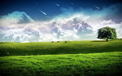 Free Wallpaper New Windows 10 Backgrounds 4k Download