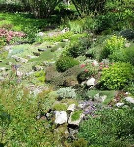 Pflanzen Japanischer Garten Anlegen : 50 moderne gartengestaltung ideen ~ Markanthonyermac.com Haus und Dekorationen