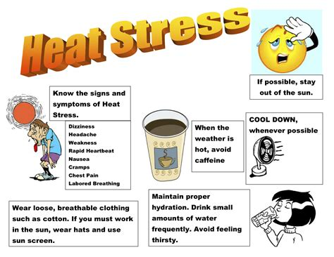 Its Summertime…know The Symptoms Of Heat Stress. Cheapest Car Insurance In New York. Criminal Justice Colleges In Ct. Which Stocks To Buy Right Now. What Is Hvac Technician Salary. Open University Online Courses. Is Phoenix University An Accredited School. Pest Control West Palm Beach. Biometric Data Collection Nosql Db Comparison