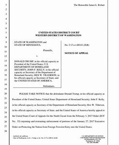 Court of Appeal rejects bid to reinstate Trump travel ban ...