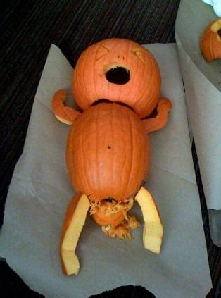 10 Halloween Pregnancy Pumpkins Who Got Themselves Knocked Up