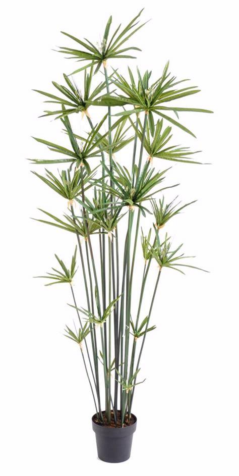 plante artificielle papyrus alternifolius en pot int 233 rieur h 180 cm vert