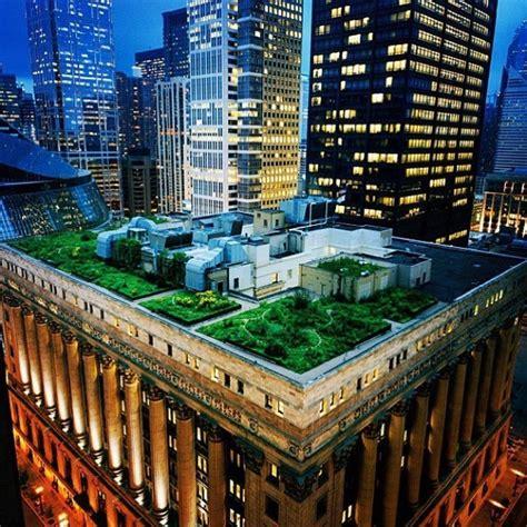 Your S House Garden City chicago city roof top garden house garden casa