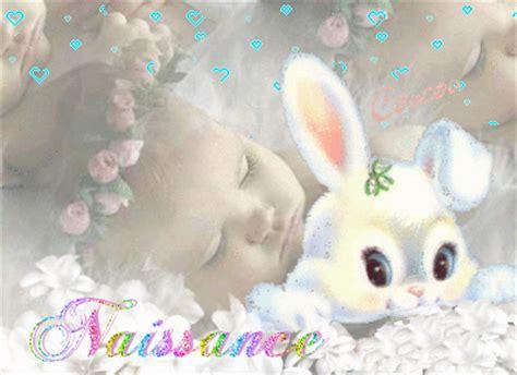 naissance bebe lapin