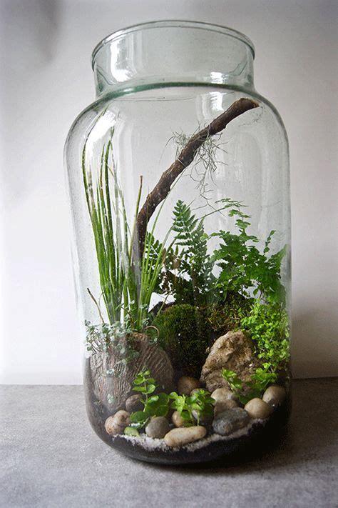 17 meilleures id 233 es 224 propos de vente aquarium sur aquarium a vendre terrarium a