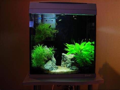 aquarium angle arrondi