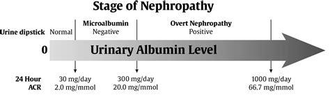my site chapter 29 chronic kidney disease in diabetes