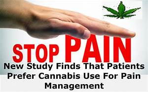 New Study Finds That Patients Prefer Cannabis Use For Pain ...