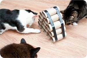 25+ best ideas about Cat Playhouse on Pinterest | Cat play ...