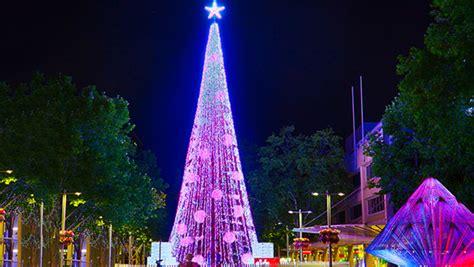 Christmas Mad Aussie David Richards Sets Tree Lights
