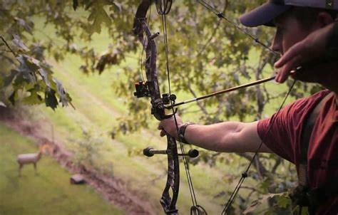 7 Tips To Stay Safe In Your Tree Stand