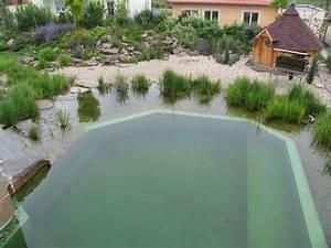 Kosten Für Pool : schwimmteich planen und bauen ~ Markanthonyermac.com Haus und Dekorationen