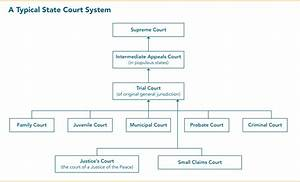 State Courts 101: Structure and Selection | Lambda Legal