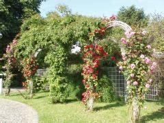 pergolas et treillage pour plantes legiflor