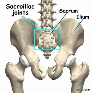 Sacroiliac Joint Pain or Lower Back Pain? - Pilates 4 Physio