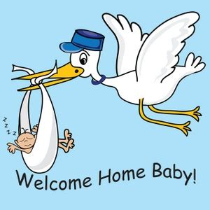 Free Stork Clipart Image 0515090729225654  Baby Clipart