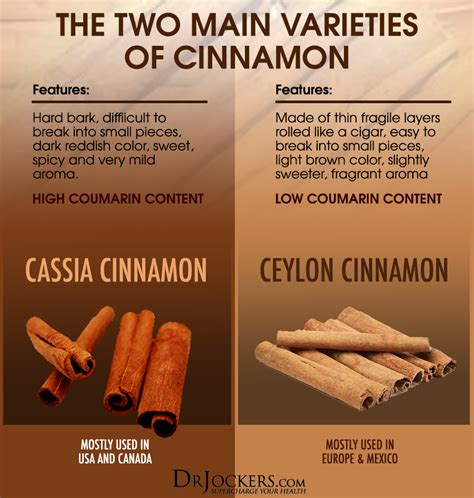 What Is The Best Type Of Cinnamon To Use?  Drjockerscom