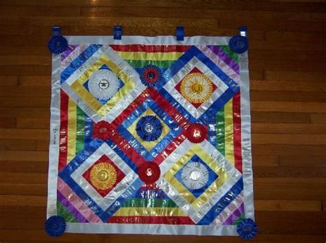 17 Beste Afbeeldingen Over Quilts From Show Ribbons Op Pinterest Pigs Na Blanket Recipe Which Electric Best Deals On Blankets Animal Pillow Charlie Brown Kid Extra Thick Fleece Personalized Grandma Estrella Horse