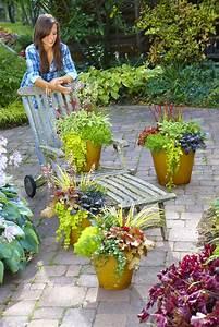 Gräser Kübel Terrasse : willkommen herbst dekorative pflanzen f r beet k bel und kasten das gr ne medienhaus ~ Markanthonyermac.com Haus und Dekorationen