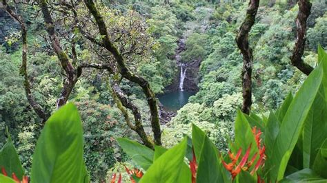 Have $20m? You Can Buy The Garden Of Eden … In Hawaii