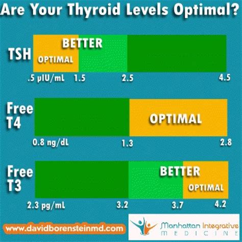 hypothyroid dads advice for with an underactive thyroid