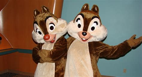 Chip N Dale Costume by Pin By Mascotshows Steven On Chip And Dale Costume