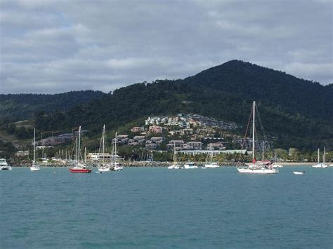 Boat Mooring Airlie Beach by Photo Of Airlie Beach Afloat Free Australian Stock Images