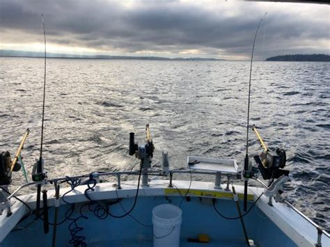 Private Boat Tours In Seattle by Photo0 Jpg Picture Of Fish Finders Private Charters