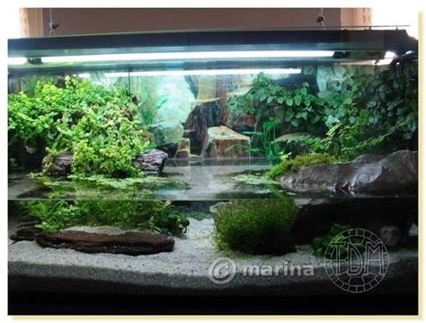 id 233 e d 233 co pour aquarium tortue encombrement place