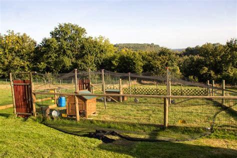 domaine du martinaa elevage gourmandise jardinage et partage construire sa voli 232 re 224 poule