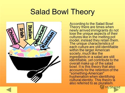 opinions on salad bowl cultural idea