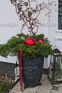 Haus Weihnachtlich Dekorieren : die besten 25 weihnachtsdeko aussen ideen auf pinterest weihnachtsdeko hauseingang ~ Markanthonyermac.com Haus und Dekorationen