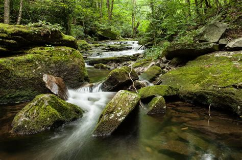 Pa Fish And Game Boat Title by Pennsylvania Conservatives Continue Assault On Wild Trout