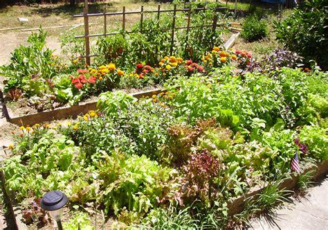 Garden Design Ideas, London Garden Landscaping & Planting