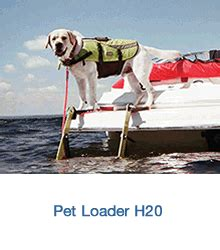 Dog Boat Rs Stairs by Pontoon Ladders For Dogs Best Ladder 2018
