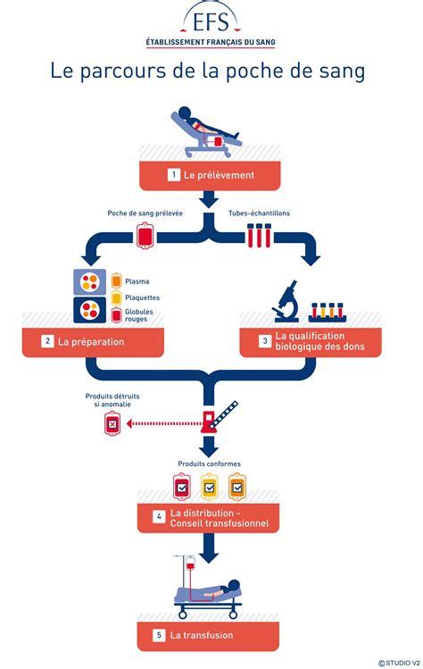 le parcours du donneur et de la poche de sang initiatives sanitaires et sociales mondiales