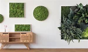 Pflanzen An Der Wand : pflanzenwand selber bauen das wichtigste know how f r den wandgarten ~ Markanthonyermac.com Haus und Dekorationen
