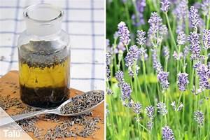 Lavendelöl Selber Machen : lavendel l selber machen rezept und anleitung ~ Markanthonyermac.com Haus und Dekorationen