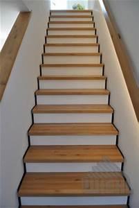 Handlauf In Wand : wiehl treppen aufgesattelte treppen ~ Markanthonyermac.com Haus und Dekorationen
