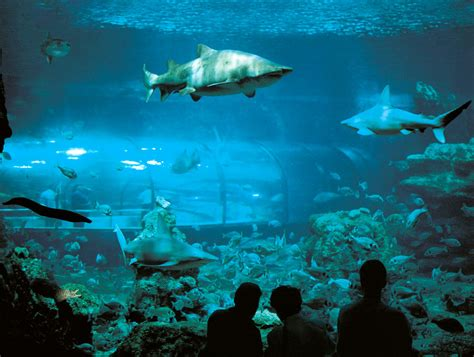 barcelona s 10 most visited tourist attractions friendly