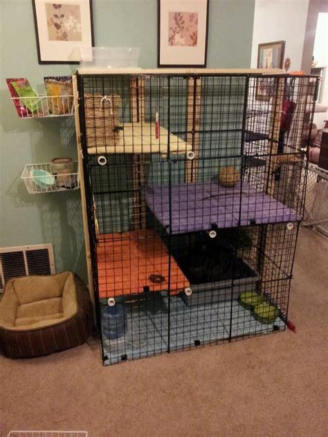 17+ Best Ideas About Indoor Rabbit Cage On Pinterest