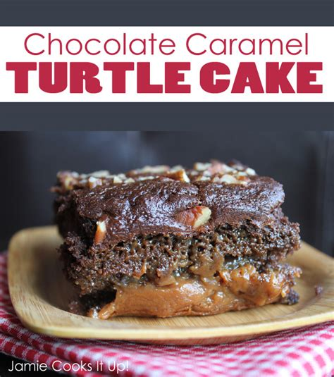 chocolate turtle cake chocolate turtle cake recipe brown hairs