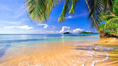 Plaża, Morze, Palmy, Wyspy, Tropiki