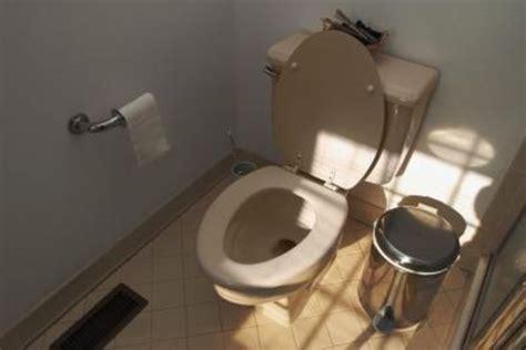 plumbing problems plumbing problems toilet not flushing