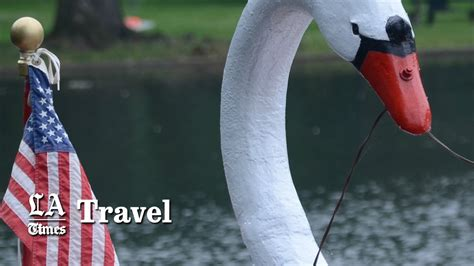 Swan Boats Videos by All Aboard The Swan Boats Of Boston Youtube